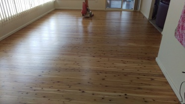 Cypress pine floor in Shellharbour being prepared for the final coat of water based polyurethane (Bona Traffic)