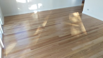 A new Southern Beech hardwood floor coated with a water based polyurethane
