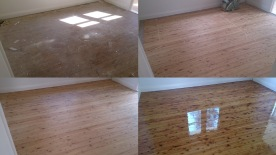 Different stages in the sanding and coating process on a Cypress Pine floor